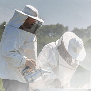 Abbigliamento per apicoltori